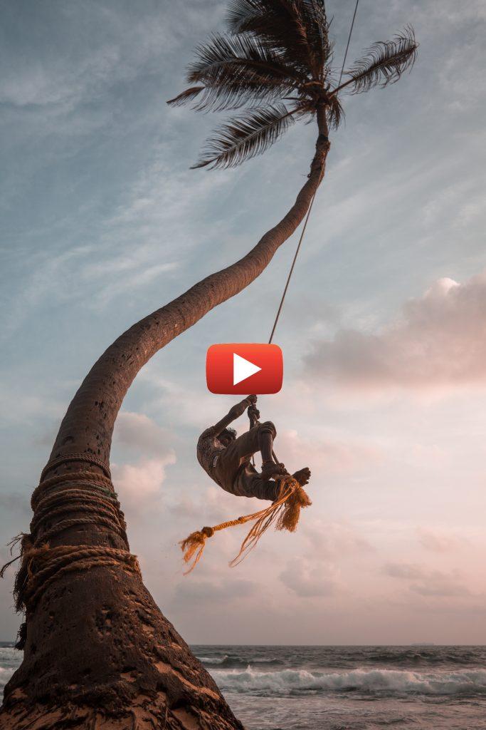 Homme qui se balance à un cocotier